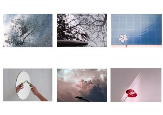Usar fundos iguais é uma ótima forma de organizar o feed no Instagram