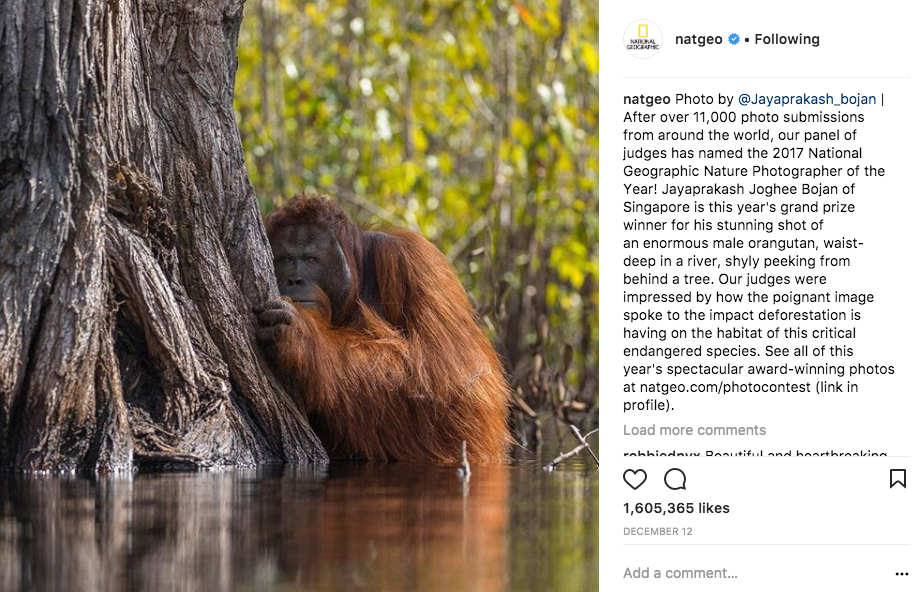 foto-instagram-national-geographic