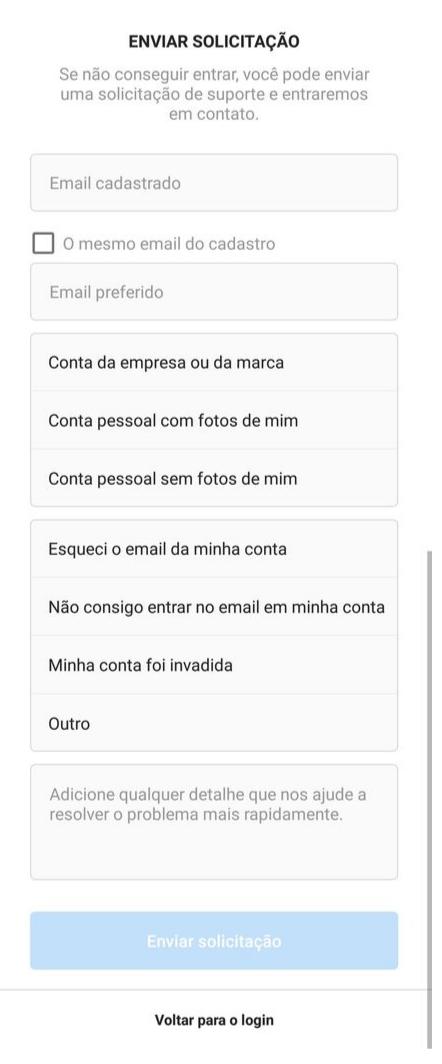 Captura de tela mostrando formulário de contato com o Instagram
